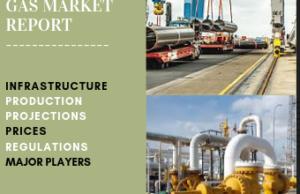 2019 NIGERIAN GAS MARKET REPORT